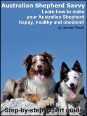 australian-shepherd-ebook